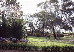 The Reserve, Barossa Valley, Adelaide (harrybv319) Tags: hasselblad fujifilmvelvia100 carlzeissdistagoncf6035 hasselbladflextightx5 thereserve barossavalley adelaide southaustralia november2014