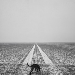 foresight (Andrea Schuh) Tags: blackandwhite