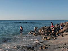 "caspersen beach (""One who sits by the fire"") Tags: venice florida gulfcoast gulfofmexico ocean water rockybeach caspersenbeach"