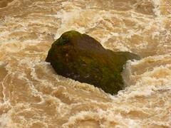 Fels in der Brandung (Jörg Paul Kaspari) Tags: irrel irrelerwasserfälle river wild fluss gewässer prüm naturpark südeifel eifel hochwasser fels rock der brandung felsinderbrandung roter sandstein
