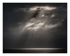 Morning is breaking. (Peter & Olga) Tags: sky clouds stormy light atmosphere ocean summer morning change fujifilm olgabaldock