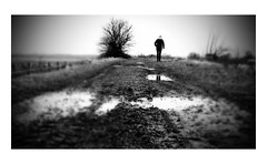 Muddy Times (Robert-Jan van Lotringen) Tags: grey winter walk muddy grainy black white water soil sombre depressing person cold cloudy monochrome edge focus dof mood reflection netherlands vianen polder lek christmas