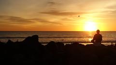 Celebrating Sunset on Coronado Beach, San Diego (lhboudreau) Tags: sandiego coronadoisland coronadobeach beach california westcoast coast sand outdoor outdoors oceanfront sky coronado people seaside ocean water sunset bird birds waves seabird seabirds pacific pacificocean seagulls gulls gull seagull sea wave landscape shore sunworshiper sunworship sun clouds