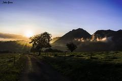 Un nuevo año, un nuevo amanecer (Jotha Garcia) Tags: amanecer sunset sunrays rayosdesol arboles trees mountains landscape junco asturias españa spain 2017 jothagarcia nikond3200