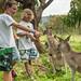 2017-Australia-SydneyToMelbourne-0074.jpg