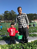 20180101_Pick up the strawberries. (violin6918) Tags: violin6918 taiwan hsinchu apple iphoto7plus i7 mobile strawberries cute lovely littlebaby angel children child pretty princess baby portrait kid daughter girl family shiuan