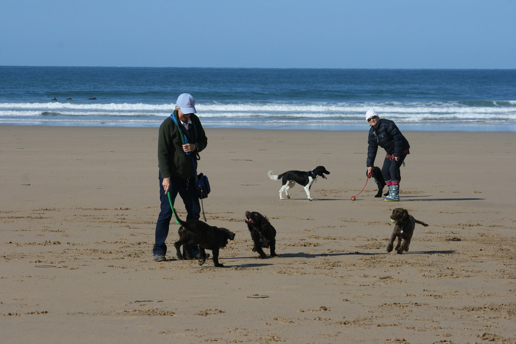 Pauline & Hazel with the dogs, Watergate Bay