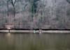 Fishing in January (Dumby) Tags: pasărea brănești ilfov românia landscape peisaj ft30 panasonic outdoor