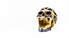 IMG_5804 (Les Photos De JaNoT) Tags: tete de mort crane skull