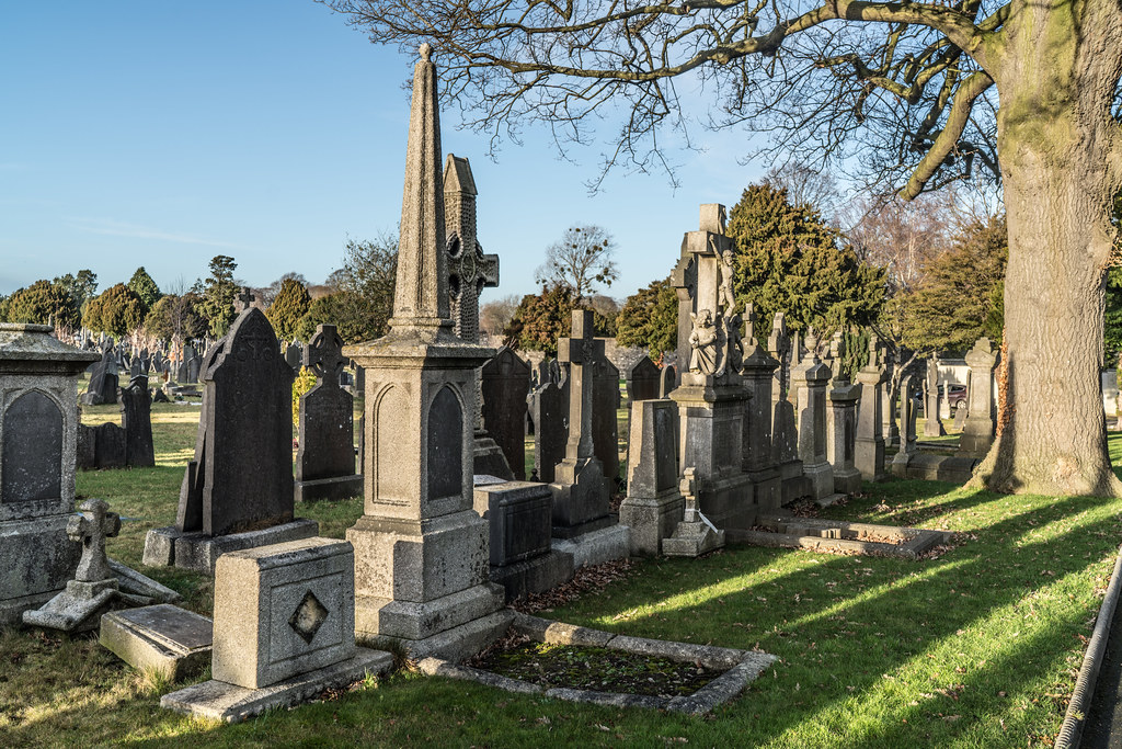 VISIT TO GLASNEVIN CEMETERY IN DUBLIN [FIRST SESSION OF 2018]-134920