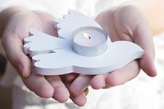 Entre las manos (Letua) Tags: 52semanas 52anonimos blanco candle candlelight hands lifeisarainbow manos paloma paz peace peacesymbol vela white