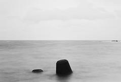 nikonF3 (haco-otoko) Tags: analog filmisnotdead フィルム film carlzeiss hasselblad planar ブローニー ハッセルブラッド mediamfomat 6×6 120 nikonf3