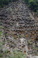 Beehive Mountain (cowyeow) Tags: bee bees beehive wood wooden many mountainside cliff farm shennongjiaforestrydistrict composition asia asian china chinese shennongjia landscape mountains hubei rock tall rocks valley culture travel
