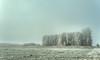 Total colour depletion. (Alex-de-Haas) Tags: smorgens 50mm d5 hdr january nederland nederlands netherlands nikkor nikkor50mm nikon nikond5 noordholland schoorldammerbrug thenetherlands westfriesland bevroren bomen bridge brug cold daglicht daylight fog foggy freezing frozen handheld haze hazy highdynamicrange januari kou koud landscape landschap licht light meadows mist misty morning nevel nevelig ochtend trees vrieskou weiland winter