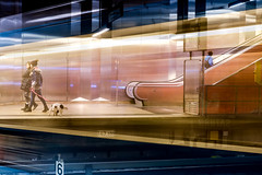 speed (Moni E) Tags: speed transport light lines station dog munich train tube metro ubahn fuji fujixt1 escalator tempo