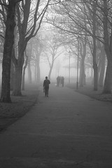 One foggy morning in December. (Barry Miller _ Bazz) Tags: outdoorphotography blackandwhite sigma85mmart fog spooky mono canon 5dsr widnes victoria park