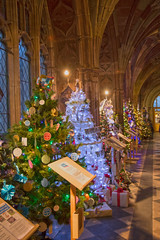 4U5A6432 (bartlett2) Tags: | worcester cathedral christmas trees worcestershire