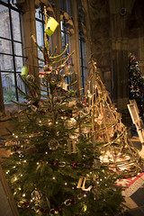 4U5A6417 (bartlett2) Tags: | worcester cathedral christmas trees worcestershire