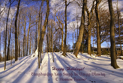 Happy Holidays! (Iskou-Hee) Tags: winter forest shadows holidays english armenian russian