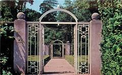 Allerton Park Formal Garden Iron Gates postcard, Monticello, IL 1950s (RLWisegarver) Tags: piatt county history monticello illinois usa il