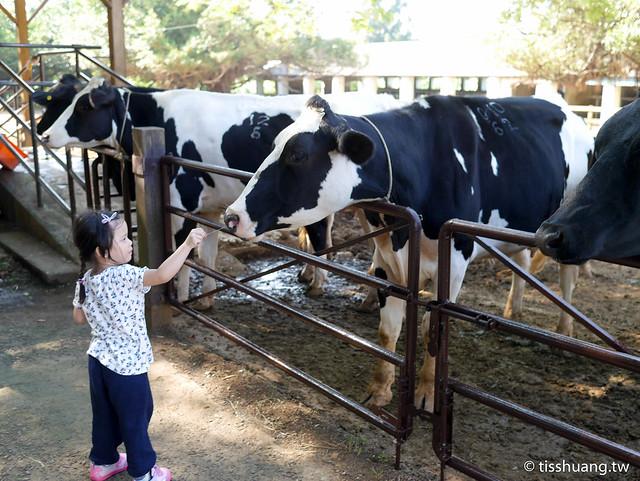 埔心農場-2460267