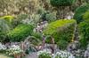 Gardens at the Cheetal Grand (Pejasar) Tags: cheetal grand restaurant khatauli bypass nh 58 muzaffarnagar uttar pradesh 251201 india gardens plants nature blooms flowers landscape garden grass sky tree