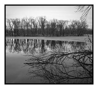 Pecatonica Wetlands, Illinois