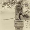 Junction (Bud in Wells, Maine) Tags: fence wellsbeach closeup rope niksoftware bokeh monochrome