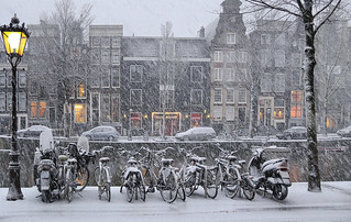 Chilling snowflakes falling all over Amsterdam