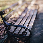 A bench in a park with bokeh background thumbnail