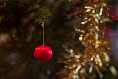 Tiny Bauble On A Christmas Tree (k009034) Tags: 500px red reflection tree christmas bokeh ornament branches small round xmas candle tiny holidays hanging indoors decorations tinsel bauble lights teamcanon