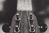 Strings (hey ~ it's me lea) Tags: redux2017myfavoritethemeoftheyear macromondays hmm music instrument bw ukulele