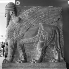IMG_3777.jpg (Bri74) Tags: archeology berlin bw geometric germany lamassu museumsinsel pergamonmuseum sculpture square statue
