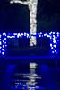 christmas season decorations and lights at gardens (DigiDreamGrafix.com) Tags: lights background christmas light tree christmastree christmaslights christmasbackground xmastree blurredlights green color red yellow design shiny celebration decoration decorative festive holiday xmas bright new celebrate decorate season seasonal scene abstract sparkle pattern black dark december snow winter year backdrop blur night shining glow wallpaper magic blurred circles bokeh defocused blurry dani9ielstove belmont nc