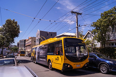Newtown - Rintoul Street (andrewsurgenor) Tags: transit transport publictransport nzbus gowellington electric trackless trolleybus trolleybuses wellington nz streetscenes bus buses omnibus yellow obus busse citytransport city urban newzealand