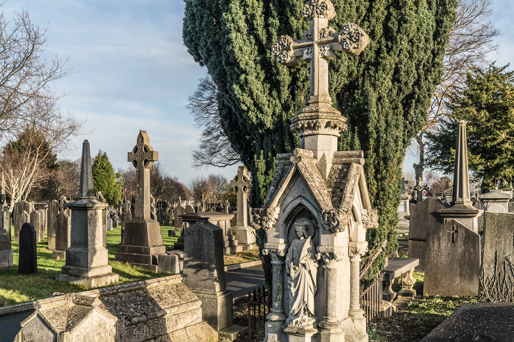 VISIT TO GLASNEVIN CEMETERY IN DUBLIN [FIRST SESSION OF 2018]-134925