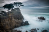 Winter Cypress (59roadking - Jim Johnston) Tags: ifttt 500px coast coastline ocean shore seascape long exposure shoreline pacific idyllic tranquility headland rocky pebble beach lone cypress