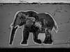 The Wheatpaste Elephant (Steve Taylor (Photography)) Tags: elephant animal graffiti pasteup wheatup wheatpaste streetart monochrome blackandwhite monotone outline worn