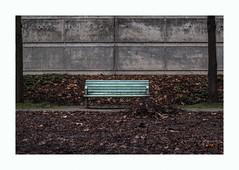 Banc en hiver (hélène chantemerle) Tags: jardinsurbains banc feuillesmortes mur tronc vert marron gris garden city urban bench trunk broun grey black green