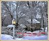 Christmas greeting to all. (PJD-DigiPic) Tags: greeting christmasgreeting pjddigipic house glastonburyconnecticut light lamp