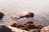 merged. (Nicole Favero) Tags: verde sea waves love cute cool awesome forever followme mine nicolefavero lightroom photography crazy rocks nicky grado italy place territory sunset merge merged