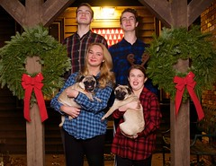 Silly Version of Christmas Portrait (Pak T) Tags: adt bow bows christmas christmasdisplay ddt decorations dog dogs dxt externalflash flannel kat monolight olympusmzuiko25mmf18 porch pug pugs sillyfaces softbox wreath wreaths