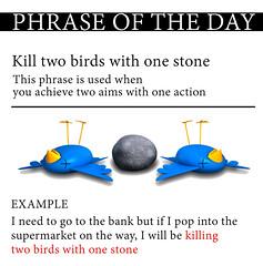 kill 2 birds with 1 stone (phrase of the day)