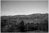 M9-1049742 (Giacomo Pagani) Tags: giacomo pagani giacomopagani leica camera ag m9 full frame ccd rangefinder telemetro 2017 voigtlander 35 mm f25 color skopar