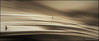 sepiART (GEROCIKA) Tags: sepiart artistic conceptual minimalism people silhouettes sepia canon split croatia white balance