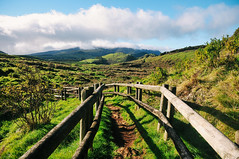 Furnas do Enxofre (Terceira Island, Azores) (Gail at Large | Image Legacy) Tags: 2017 azores açores ilhaterceira portugal terceira gailatlargecom furnasdoenxofre
