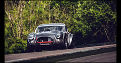 Ac Cobra 289 (1963) (Laurent DUCHENE) Tags: peterauto dijonprenois 2017 sixtiesendurance motorsport car grandprixdelagedor ac cobra 289 americancar shelby