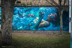 Age of Abundance (!Koss) Tags: mainz kastel brückenkopf graffiti germany wiesbaden rafi street art urban arte mainzkastel