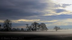 Trees in mist (Barry Potter (EdenMedia)) Tags: barrypotter edenmedia canon eos m5 ryedale pickering