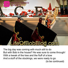 log bob pt 13 (DoreanB) Tags: lifeofbob bobonalog christmas stocking mantle fireplace poem poetry humor fun